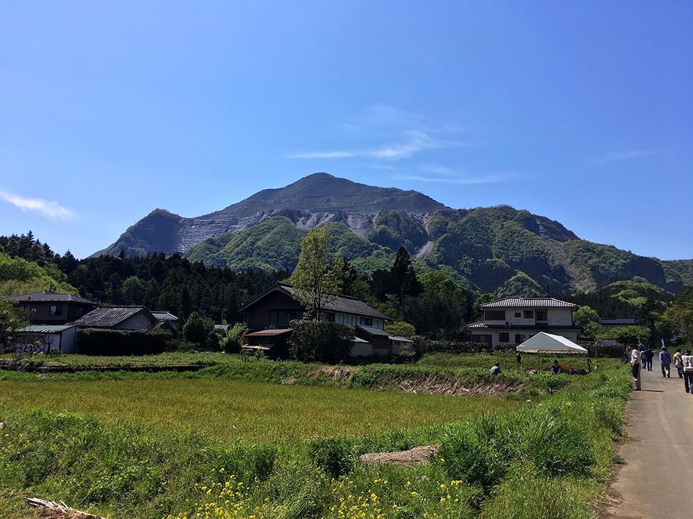 横瀬駅から羊山公園の途中の風景