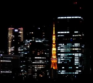 東京タワーの夜景が映える