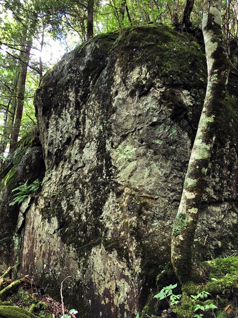 大きな岩場もあり起伏に富んでいる