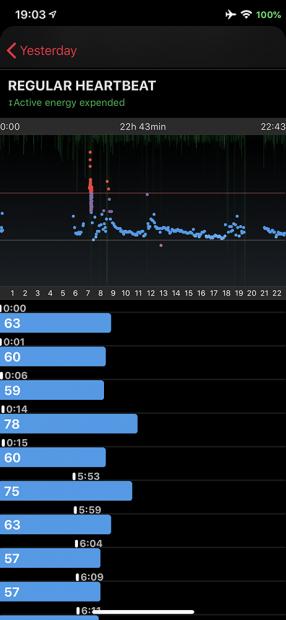 心拍数測定「HeartWatch」で常時測定した心拍数をグラフ化